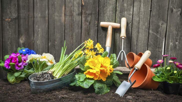 ogrodnik-jak-zostac